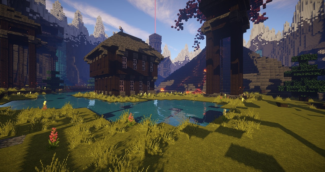 Minecraft immagini
